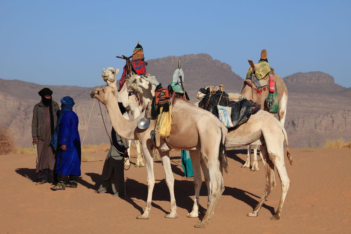 Nomadenkarawane durch die Wüste
